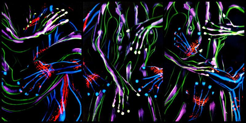Body Painting 19